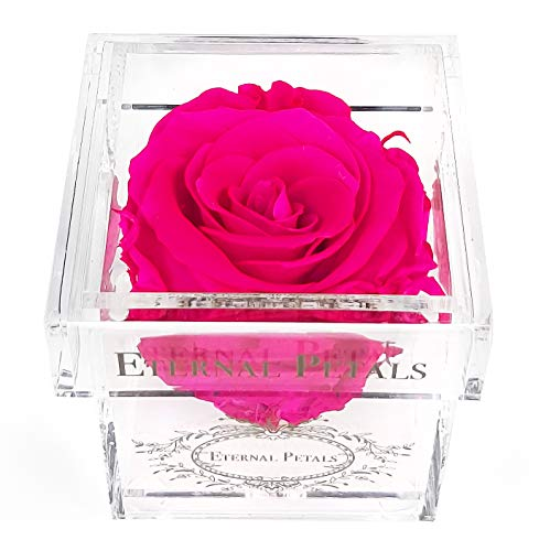 A Real Rose That Lasts A Year – White Gold Solo (Hot Pink)