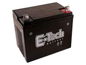 Batterie 12V 22Ah (+ pôle droite) adapté pour Rally RE12R38A Tracteur de pelouse