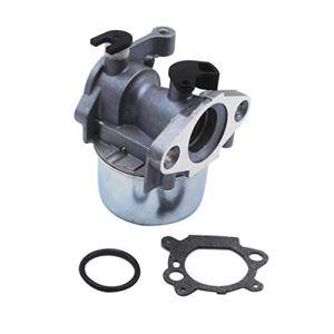 Cabilock 1 Carburateur pour Briggs Stratton 799871 799866 796707 790845 794304