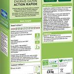 FERTILIGENE Engrais Gazon Action Rapide 3 Jours, 2,8kg, 80m²