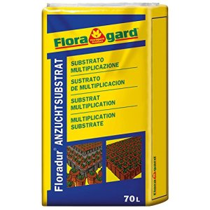 Floragard Flora Ton 3, 70l Terre Substrat semis et Tortue