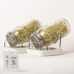 Germoir en Verre avec 2 Verre à Germer   Kit complet avec graines de germination   Germoir bocal pour graines à germer   Haute qualité avec 2 pots de germination