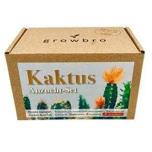 growbro Cactus Kit de culture avec pulvérisateur, cadeau d'anniversaire, plantes succulentes, cadeaux pour homme et femme, cadeau d'invité, plantes d'intérieur, cactus (cactus)