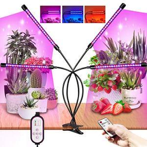 LED Lampe de Plante 360°,80 LEDs Lampe de Croissance indoor, 10 Niveaux de Luminosité & 4 Modes de Commutation lampe led horticole Spectre Complet,Télécommande RF & Minuterie de Contrôle de Fil