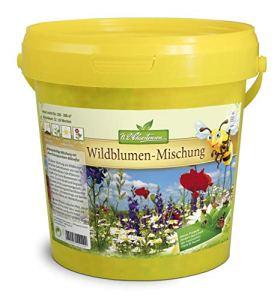 Mélange de fleurs sauvages pour 100-200 m² – Mélange de saule pour abeilles.