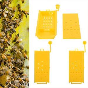minifinker Conception d'éponge de Cage d'apiculture de boîte de Reine des Abeilles, pour la Reine des Abeilles, pour l'apiculteur