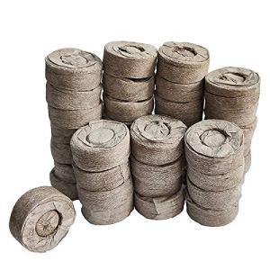 Moligin – Lot de 50 pastilles de tourbe pour plantes grasses – 30 mm