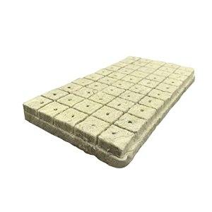 Povanjer Rockwool Lot de 50 cubes de culture en laine de pierre pour boutures clonage propagation des plantes pour une croissance vigoureuse des plantes