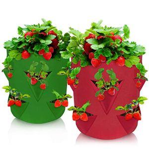 Teamkio Lot de 2 sacs de plantation de fraises avec rabat de fenêtre et poignées de sangle respirantes pour plantation de fraises, herbes, fleurs