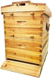 WSVULLD Bee Hive House, 100% d'abeilles d'abeilles Bee Hive Hive, Kit de démarreur de Deluxe Bee Hive Kit de Miel pour 7 Cadres de bishives, kit de démarrage de la Ruche d'abeille, Hive Hive