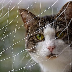YSZGUABQ Garden Net, Cat Balcony Protection Net Stair Fence Fall Prevention Net 5X5 Mesh Polyester Safety Net(Size:3X8m/9.9X26ft,Color:Maille : carrée)