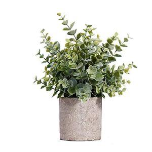 YWRD Plante Grasse Fausse Plante Faux Plantes Bureau Décor Plantes Face Intérieure Petit Plante en Pot Intérieur Véranda Décor Plante d'intérieur