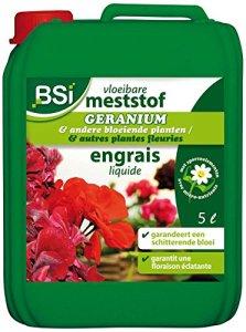 BSI Engrais pour Géranium/Plante Fleurie 5 L