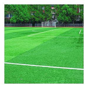 GHHZZQ Gazon synthétique Gazon Artificie Herbe Artificielle Pelouse Jardin Terrasse ou Balcon, Hauteur l'herbe 2,0/2,5/3,0 cm (Color : A, Size : 2x10m)