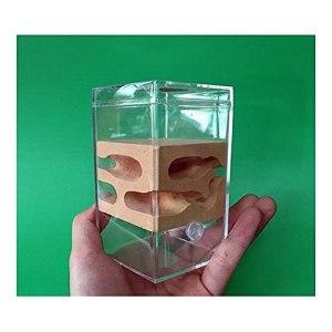 HCKLYTN Nid de fourmis carré en acrylique – Atelier de la ferme, insectes, villa – Cadeau d'anniversaire – 6,5 x 6,5 x 11,3 cm