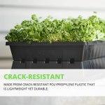 1020 plateaux – Plateau de semis pour semis de jardin – Extra résistant – Pas de trous – Lot de 5 – Microgreens – Plateau d'égouttement