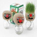 Edinber Mini plantes grimpantes – Plantes amusantes en pot – Les poupées à tête d'herbe peuvent tailler des mini plantes – Pour enfants – Bricolage – Cadeaux
