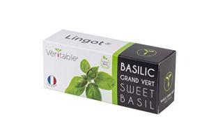 Lingot® Basilic grand vert BIO – Compatible Potager d'Intérieur Véritable® et Exky® – Recharge prête à l'emploi – Substrat avec Graines Intégrées