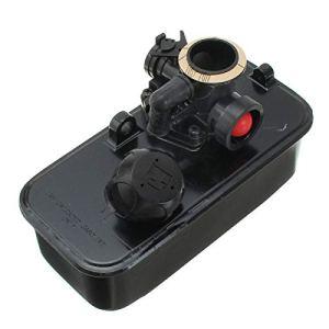 WYN Carburateur pour tondeuse à gazon 494406 498809 498809A 9B900