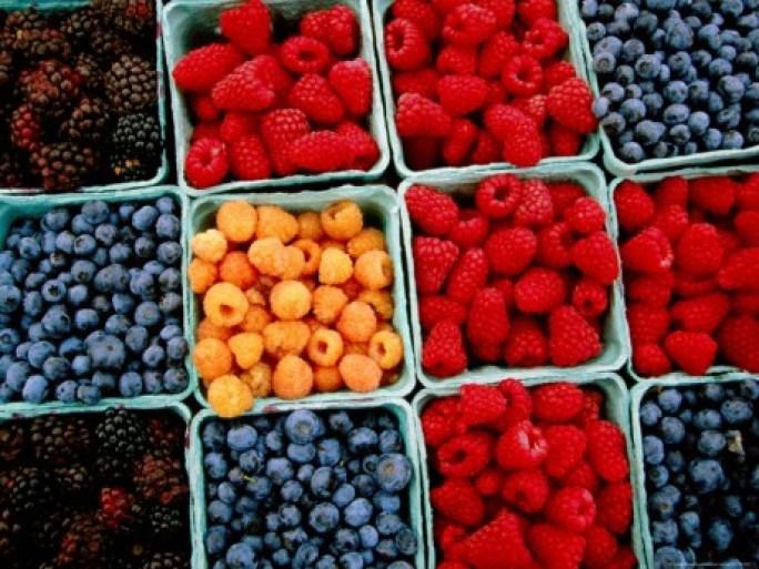 fructe-de-padure123