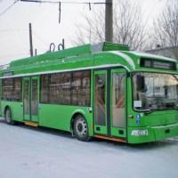 """CJH Hunedoara a aprobat înființarea societății locale de transport public """"Green line"""""""