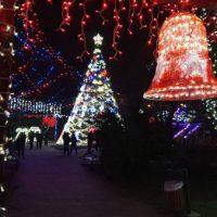 La pornirea iluminatului de sărbători de la Uricani, copiii au exclamat: O, brad frumos !