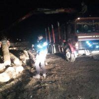 Un transport ilegal de material lemnos, de peste 23 metri cubi, a fost depistat de jandarmii montani