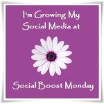 Social-Boost-Monday-Party-Button-2