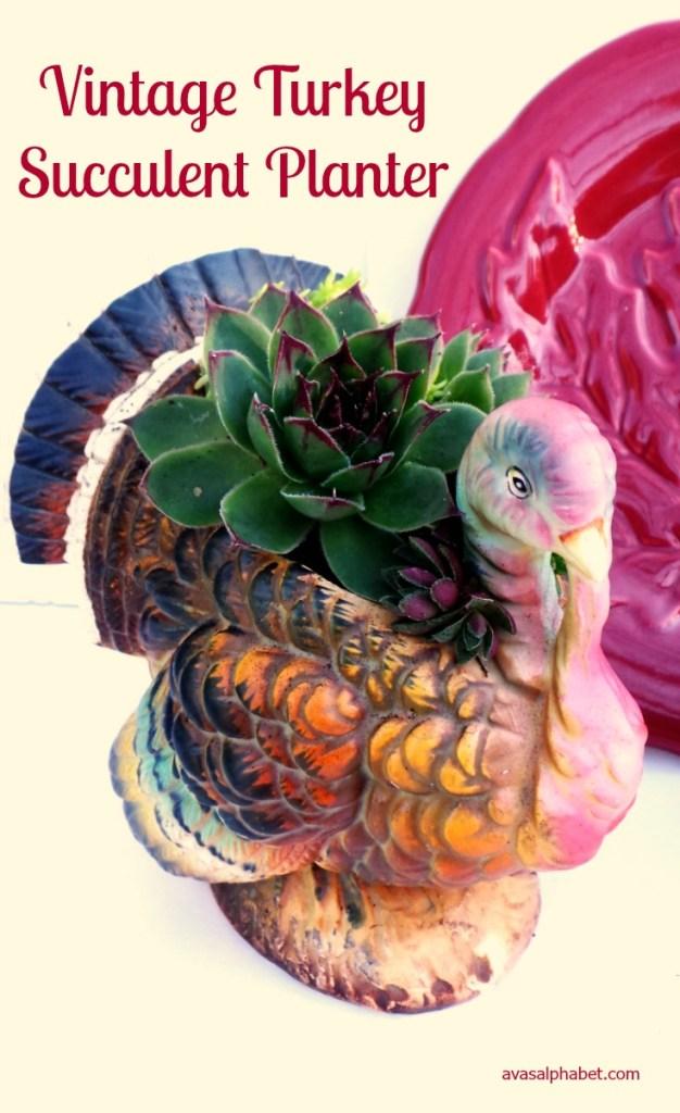 Vintage Turkey Succulent Planter