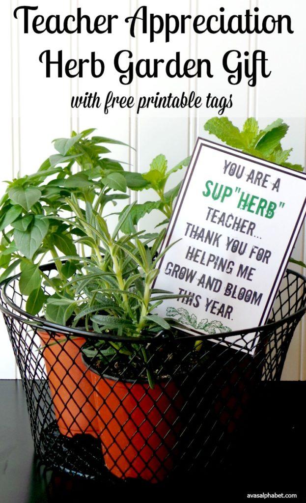 Teacher Appreciation Herb Garden Gift from Ava's Alphabet