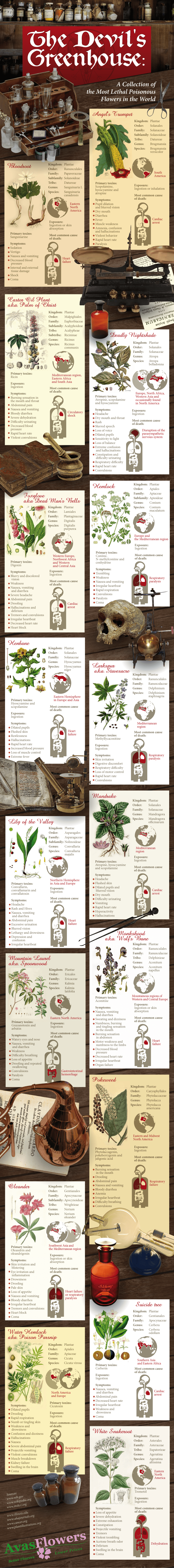 Infographic - The Devil's Greenhouse