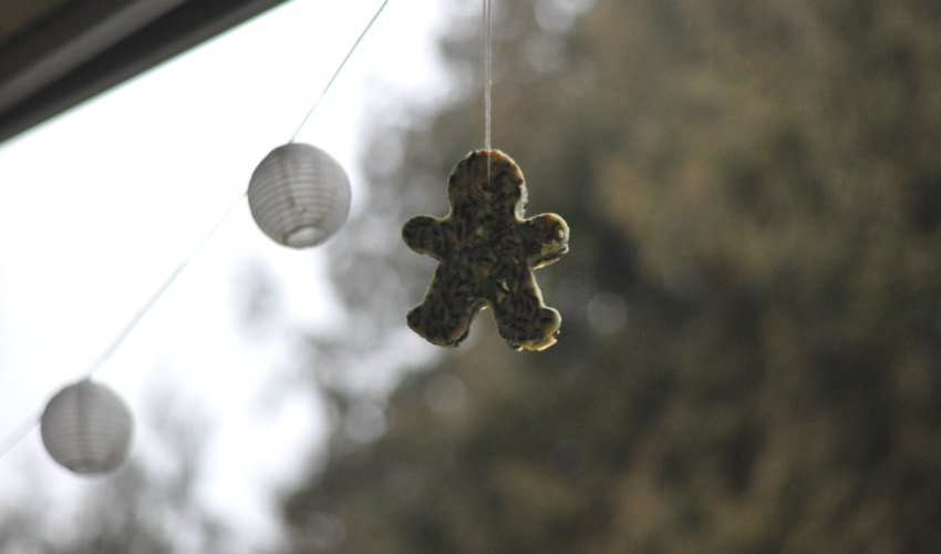 """Billet """"Gâteaux de graines pour oiseaux"""" paru sur www.avecpanache.ch"""