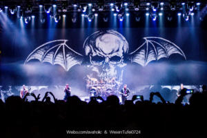 Live Shows 2015