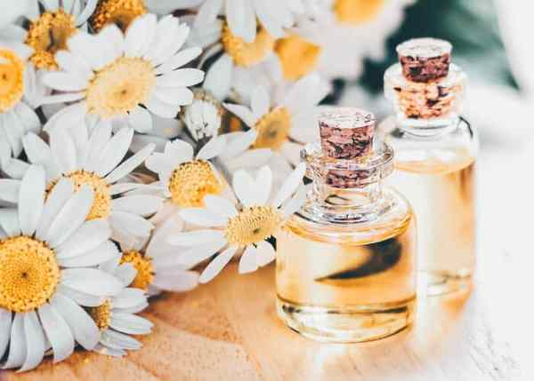 Chamomile Essential Oil for Relaxation!