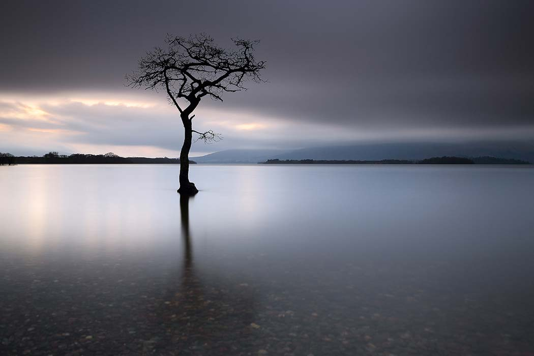 A lone tree partially submerged in the water of Loch Lomond. Click through to see 28 mind blowing photos of Scotland!