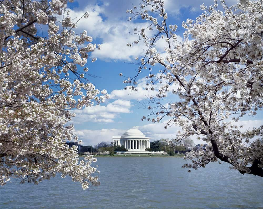 Jefferson Memorial In Washington, DC. See the top 10 things to do and see in Washington, DC!