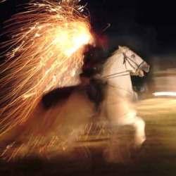 Le-cheval-de-lumiere