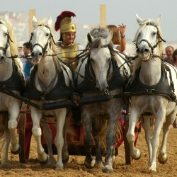chars-romains-IMGP3368
