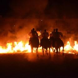 Spectacle-equestre-les-chevaux-de-feu-D70_8059