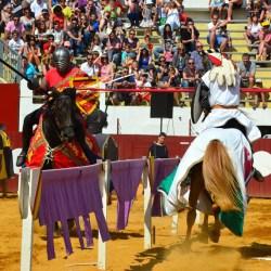 spectacle-equestre-chevalerie-tournoi-D70_7916
