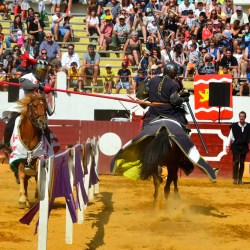 spectacle-equestre-chevalerie-tournoi-D70_7918