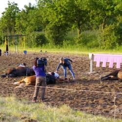 dressage-chevaux-cascades-télévision-tournageIMGP3742