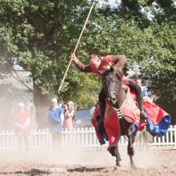 spectacle-equestre-chevalerie-ranrouet-2016-petit-bleus-photos-img_0328