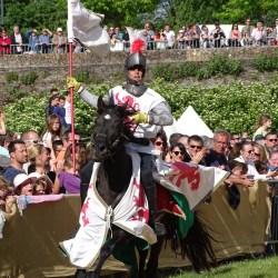 combat-equestre-les-chevaliers-DSC00265