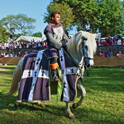 combat-equestre-les-chevaliers-img15