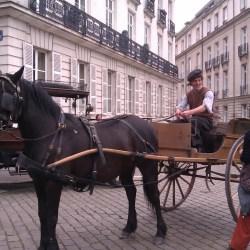 tournage-cheval-equestre-cessezlefeu-IMAG0742
