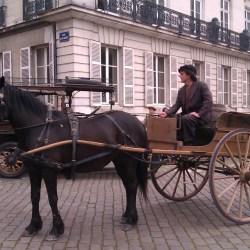 tournage-cheval-equestre-cessezlefeu-IMAG0747