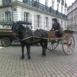 tournage-cheval-equestre-cessezlefeu-Photo0263