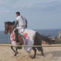 chevalerie-moyen-age-P1520243