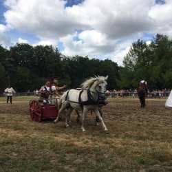 spectacle-equestre-2020-les-celtes-AG-Divino-Aventureaugalop-04